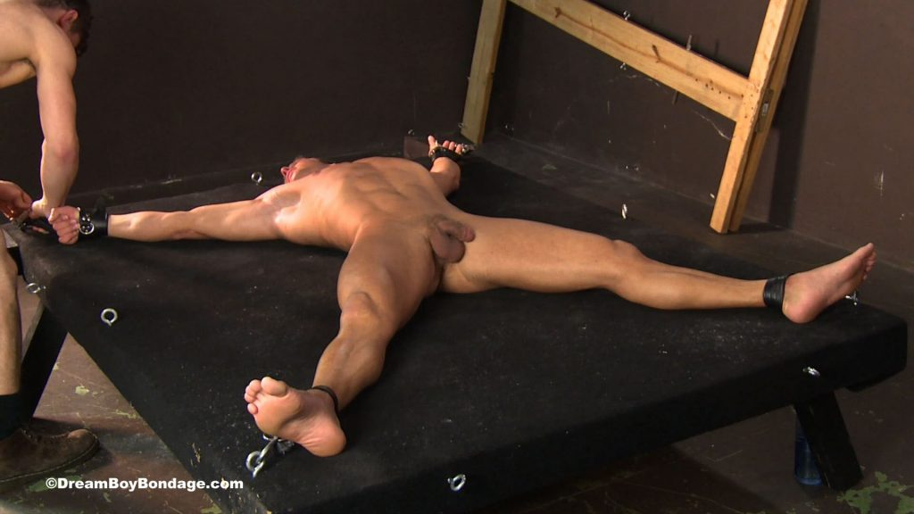 Muscle Gay Bondage 102